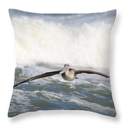 Pelican 4057 Throw Pillow