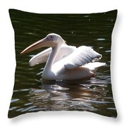 Pelican And Friend Throw Pillow