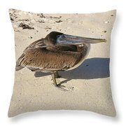 Pelican And His Shadow Throw Pillow