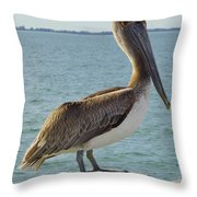 Pelican At The Gulf Throw Pillow