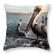 Pelican At The Pier Throw Pillow