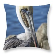 Pelican By The River Throw Pillow