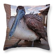 Pelican Close And Low Throw Pillow