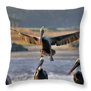 Pelican Coming In For Landing Throw Pillow by Dan Friend