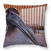 Pelican Eye Throw Pillow