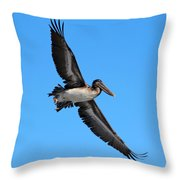 Pelican Flying High Throw Pillow