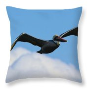 Pelican In Flight I Throw Pillow
