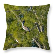 Pelican In The Trees Throw Pillow