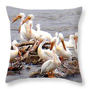 Pelican Island Throw Pillow