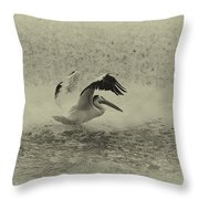 Pelican Landing In Black And White Throw Pillow by Thomas Young