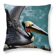 Pelican Lift Off Throw Pillow