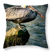 Pelican On A Pole Throw Pillow
