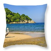 Pelican On Beach Throw Pillow