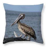 Pelican On Driftwood Throw Pillow