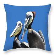 Pelican Pair At Oceanside Pier Throw Pillow