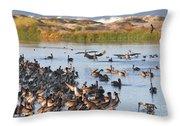 Pelican Party Throw Pillow