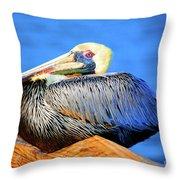 Pelican Rest Throw Pillow