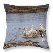 Pelican Rest Stop Throw Pillow