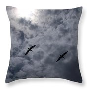 Pelican Sky Throw Pillow
