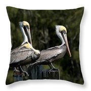Pelican Threesome Throw Pillow