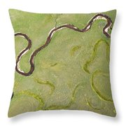 Pelican Valley Abstract Throw Pillow