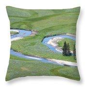Pelican Valley Swirls Throw Pillow