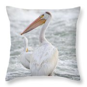 Pelican Watch Throw Pillow