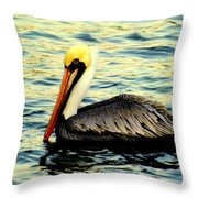Pelican Waters Throw Pillow