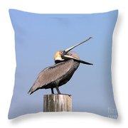 Pelican Yawn Throw Pillow