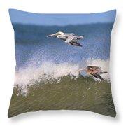 Pelicans 3870 Throw Pillow