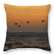 Pelicans At Sunrise 4674 Throw Pillow