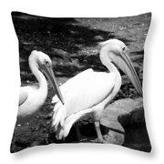 Pelicans - Bw Throw Pillow