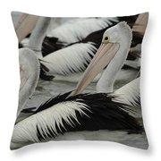 Pelicans Galore Throw Pillow
