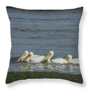 Pelicans In Floodwaters Throw Pillow