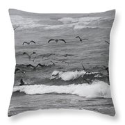 Pelicans Lunching At Ft. Stevens Oregon Throw Pillow