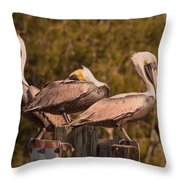 Pelicans On Watch Throw Pillow