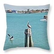 Pelicans Rule Throw Pillow