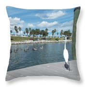 Pelicans Watching Throw Pillow