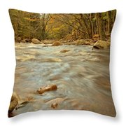 Pemigewasset River Rushing By Throw Pillow