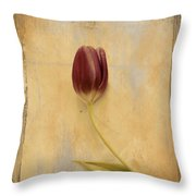 Penchant Naturel 03bt03c Throw Pillow by Variance Collections