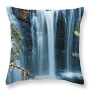 Pencil Pine Falls Cradle Mountain Throw Pillow