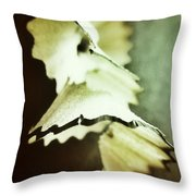 Pencil Shaving 2 Throw Pillow