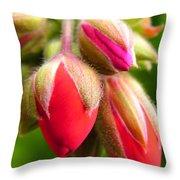 Pending Beauty Throw Pillow