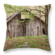 Pendleton County Barn Throw Pillow by Randy Bodkins