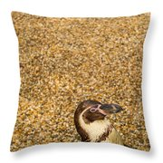 Penguin And Pebbles Throw Pillow