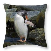 Penguin Ballet... Throw Pillow