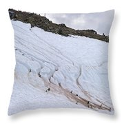 Penguin Highways... Throw Pillow