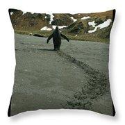 Penguin Travel Poster Throw Pillow