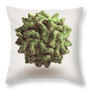 Penicillium Stoloniferum Virus Throw Pillow