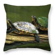Peninsula Cooter Turtles Throw Pillow